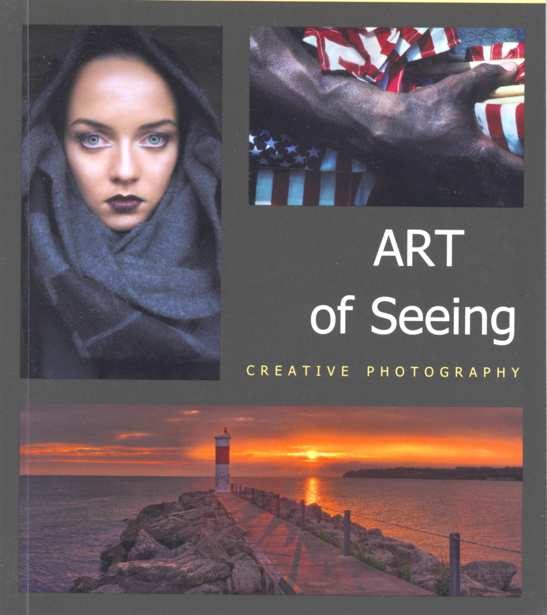 art of seeing 2010 cover