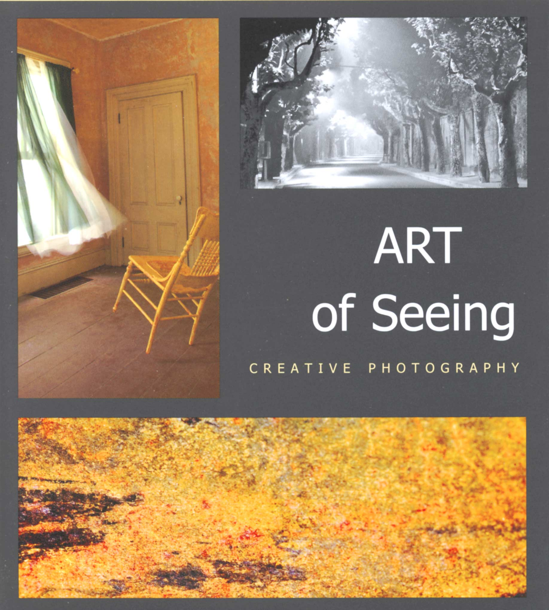 art-of-seeing-cover-2007
